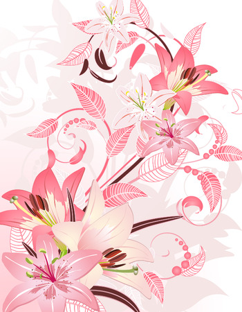 lily flowers collection: pink floral fantasy Illustration