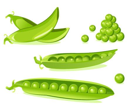 green peas: pea pod