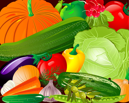 Pano vegetables Stock Vector - 6794401