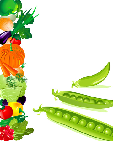 pea pod Stock Vector - 6794396