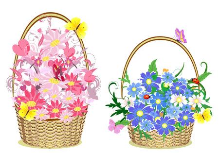 gift basket: flower baskets Illustration