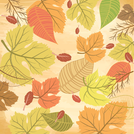 autumn leaf frame: autumn background Illustration