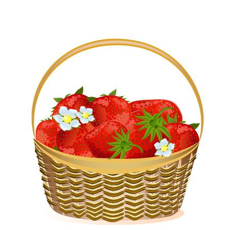 basket strawberries Stock Vector - 6879268
