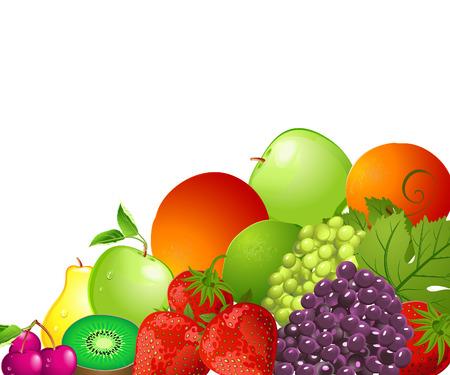 bright fruit Vector