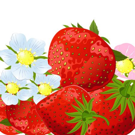 tasteful: strawberry flowers Illustration