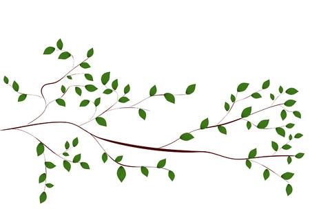 tree branch Stock Vector - 7097963
