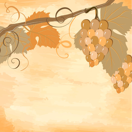 vine grunge Stock Vector - 7172067