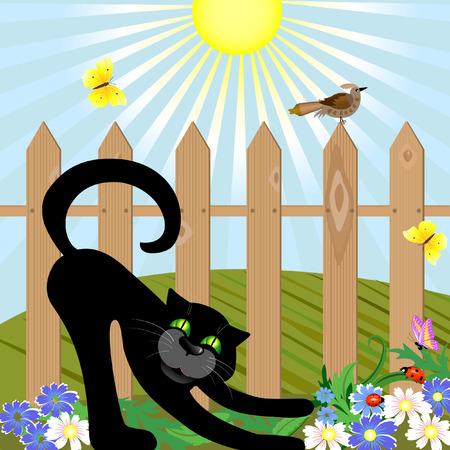 Black cat and bird Vector