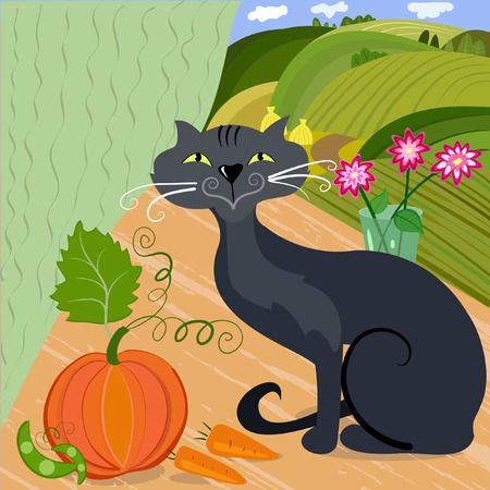 Home cat and pumpkin Vector