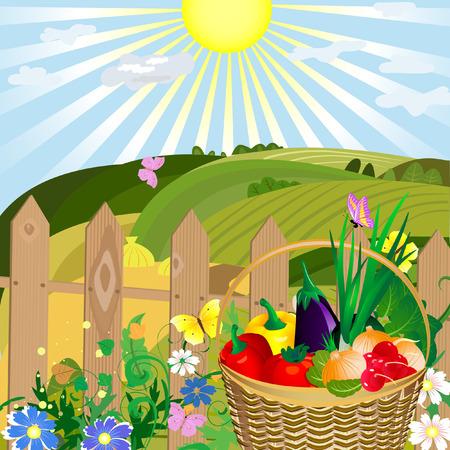 flower basket: harvest of vegetables in an outdoor