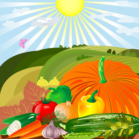 yellow  agriculture: cosecha de verduras en al aire libre