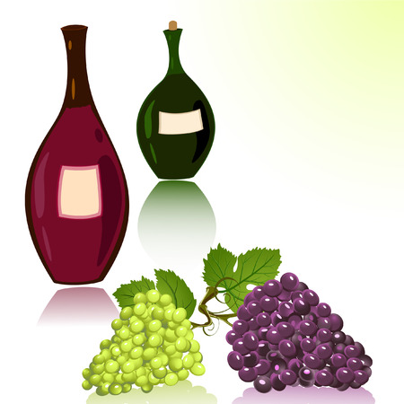 bottles of wine and grapes Vector