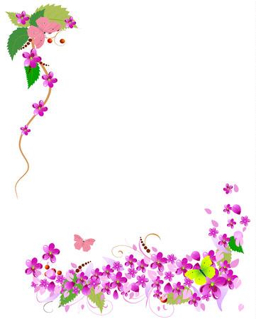 frame flower: frame of cherry blossoms Illustration