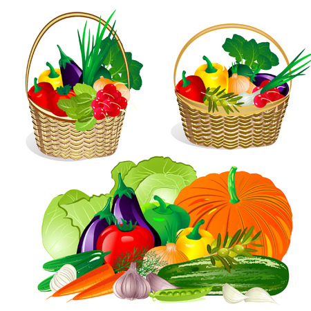 corbeille de fruits: collection de l�gumes dans le panier.  Illustration