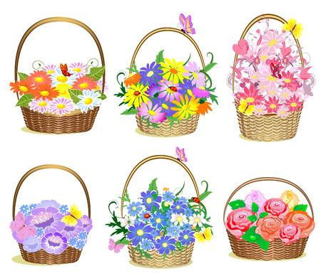 flore: Baskets of flowers Illustration