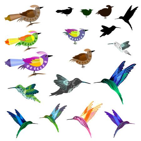 beaks: Set di uccelli