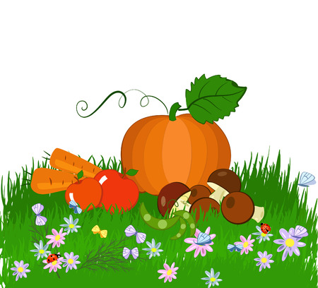 harvest on the grass Vector