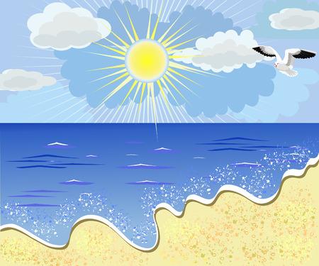gull: sea beach Illustration