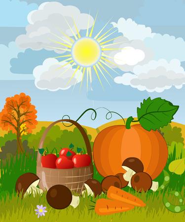 calabaza caricatura: La cosecha de la naturaleza  Vectores
