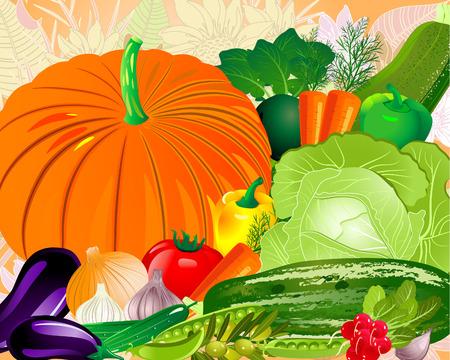 aubergine: Gem�se aus dem Garten  Illustration