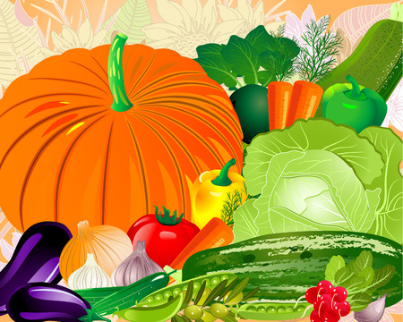 Vegetables from the garden Stock Vector - 8014512