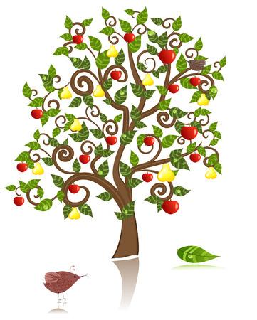 arbol de manzanas: árbol ornamental con una manzana y la pera Vectores
