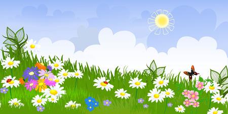 flower meadow panorama Stock Vector - 8753350
