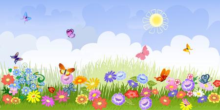 butterfly ladybird: panorama de pradera de flor Vectores