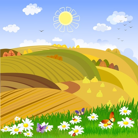 wheat illustration: Autumn rural landscape Illustration