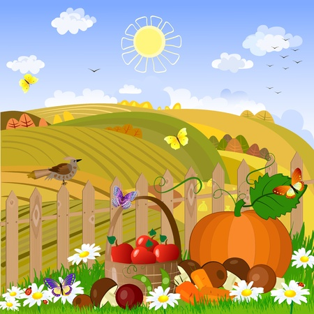 Autumn rural landscape Stock Vector - 9233820