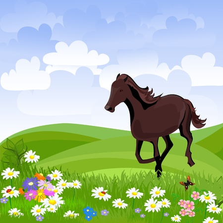 horse in the meadow Stock Vector - 9919799