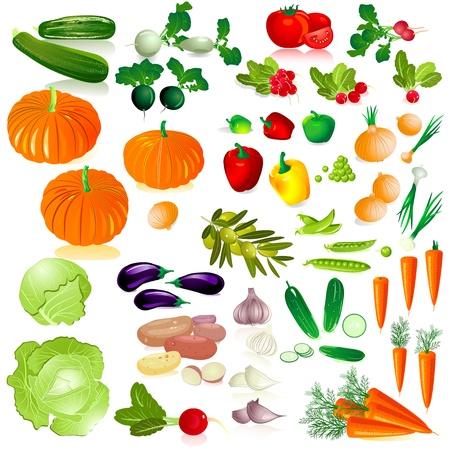 collection isolées de légumes
