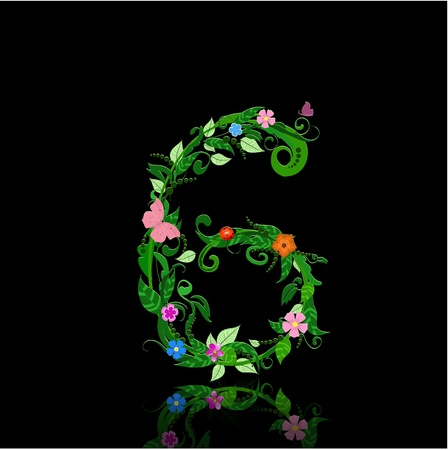 number of flowers Vector