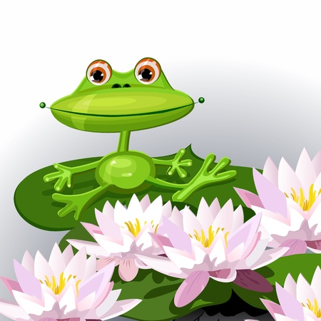 funny frog on lily Vector