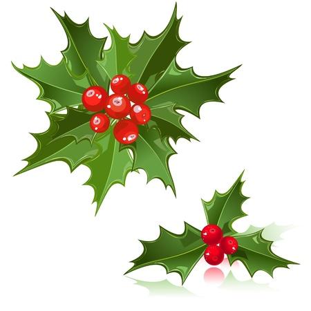 a sprig: Flor de Navidad Holly Berry