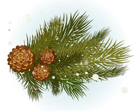 pinecone: pine branch with cone