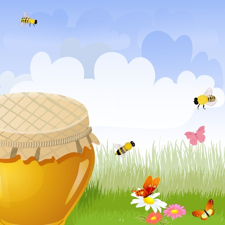 jar sweet honey in the flower meadow Vector