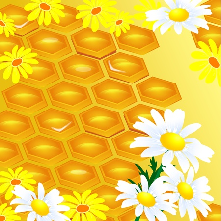 wax glossy: design of honeycomb and flowers