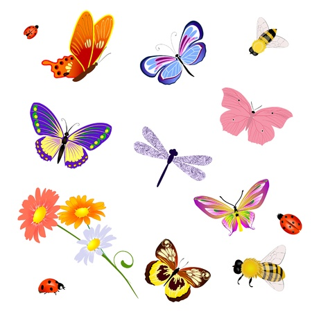 butterfly insects bee ladybug Ilustracja