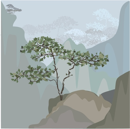 Tree on a mountain ledge Vector