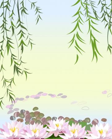 sauces: El agua de la planta con el lirio Vectores
