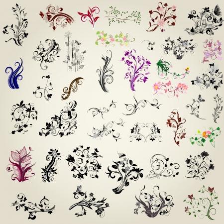 tattoo butterfly: insieme di elementi di design calligrafici