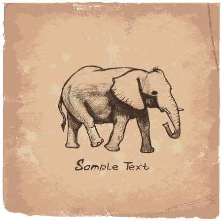elefanten: Elephant Art Zeichnung