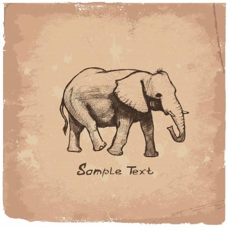 elephant�s: Elephant dibujo Art
