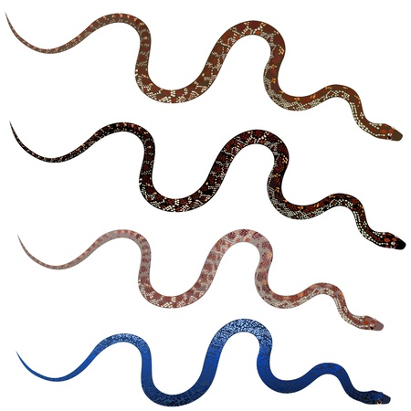 Set pretty realistic snakes Vector
