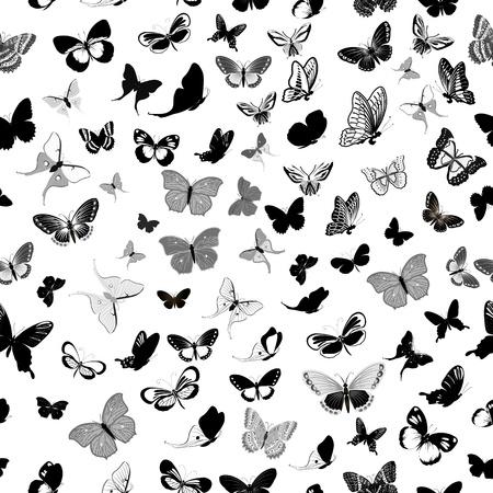 silhouette papillon: papillon arrière-plan transparent