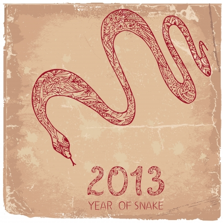 Grunge background with a snake symbol 2013 Vector