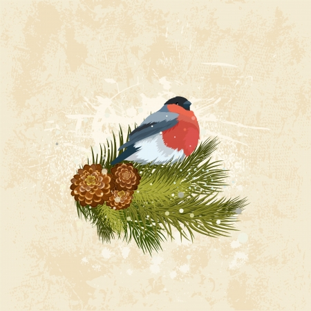 Old grunge card on Christmas with a bird Stock Vector - 15886225