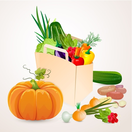 bag of vegetables Stock Vector - 17336079