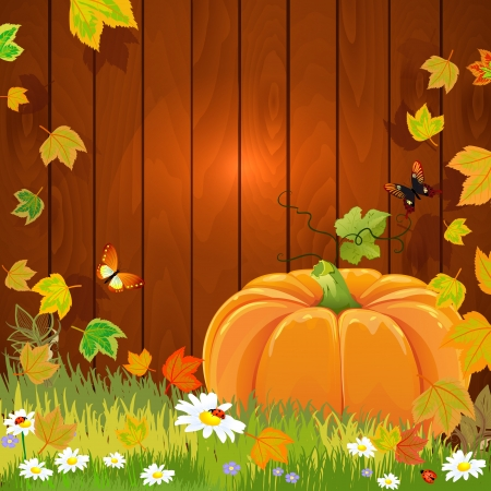 Autumn still life with pumpkin for your design Stock Vector - 17680121